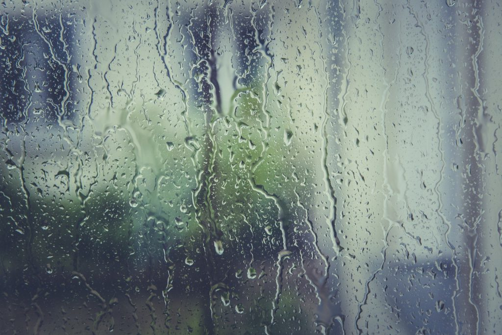 ruit met regendruppels